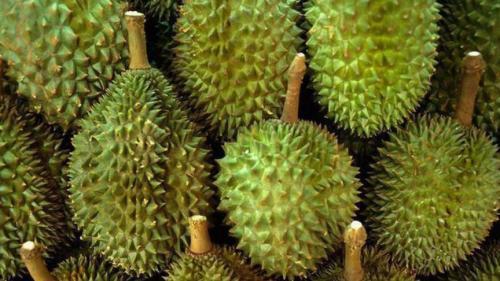 Самые необычные фрукты и овощи мира