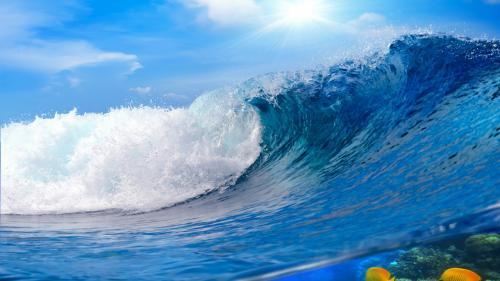 Океанология интересные факты. 30 сумасшедших фактов о Мировом океане